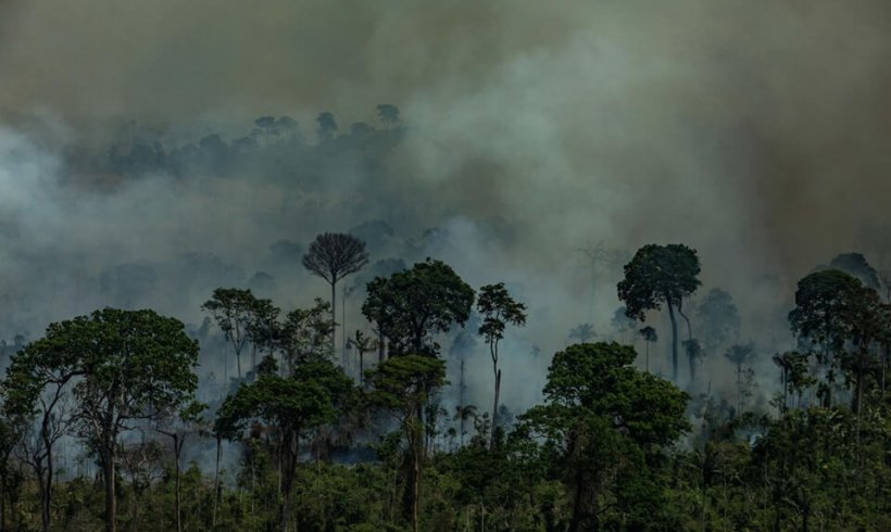 What burns in the Amazon?